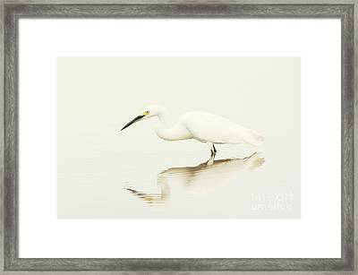 Egret In Vanilla Tones Framed Print