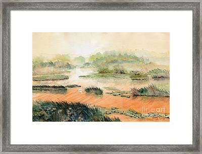 Egret On The Marsh Framed Print