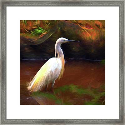 Egret Painting Framed Print by Sharon Lisa Clarke
