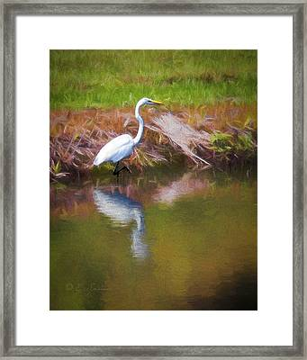 Egret Reflection Framed Print