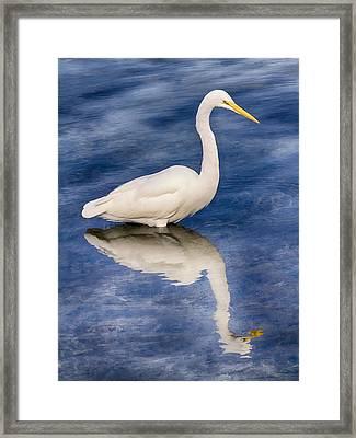 Egret Reflection On Blue Framed Print