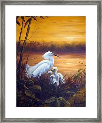 Egret With Chicks Framed Print