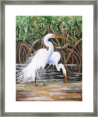 Egrets And Mangroves Framed Print