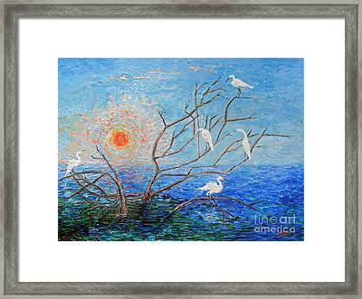 Egrets At Sunrise Framed Print