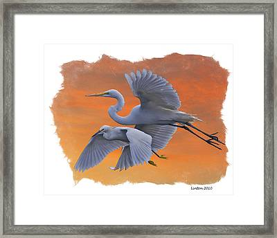 Egrets Great And Snowy Framed Print