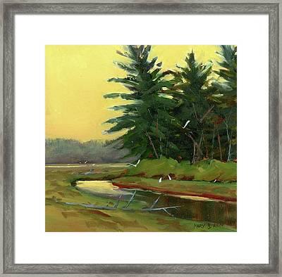 Egrets In The Marsh Framed Print