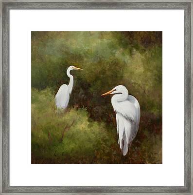 Egrets Roosting Framed Print
