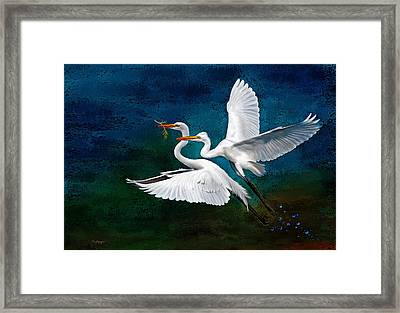 Egrets Framed Print by Thanh Thuy Nguyen