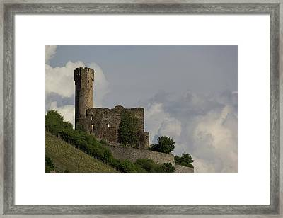 Ehrenfels Castle 03 Framed Print by Teresa Mucha