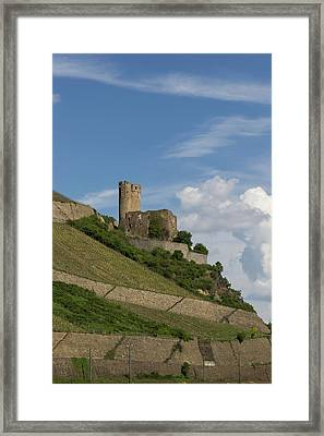Ehrenfels Castle 05 Framed Print by Teresa Mucha