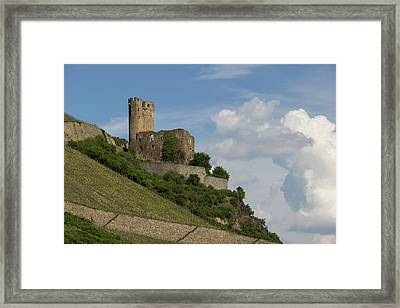 Ehrenfels Castle 06 Framed Print by Teresa Mucha
