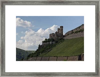 Ehrenfels Castle Framed Print by Teresa Mucha