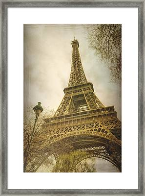 Eiffel Tower And Lamp Post Framed Print