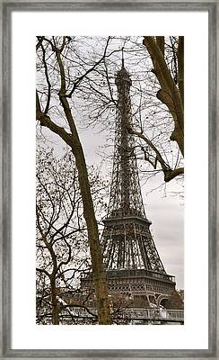 Eiffel Tower Through Branches Framed Print