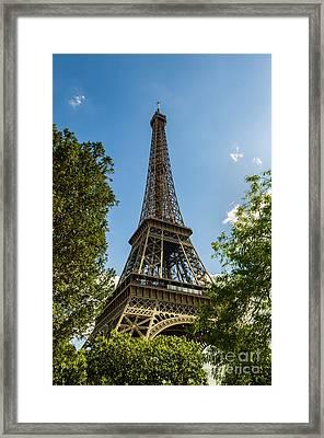 Eiffel Tower Through Trees Framed Print