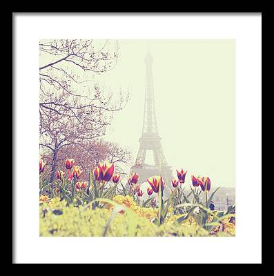Floral Photographs Framed Prints