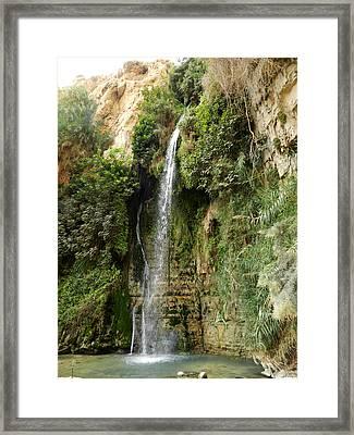 Ein Gedi Nature Reserve Framed Print