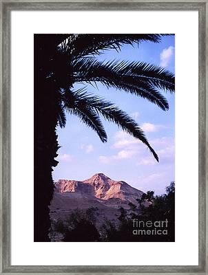 Ein Gedi Oasis Framed Print by Thomas R Fletcher