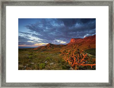 El Cap Framed Print by Aaron Bedell