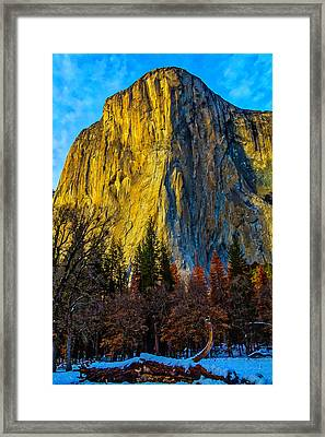 El Capitan Tall And Rugged Framed Print by Garry Gay