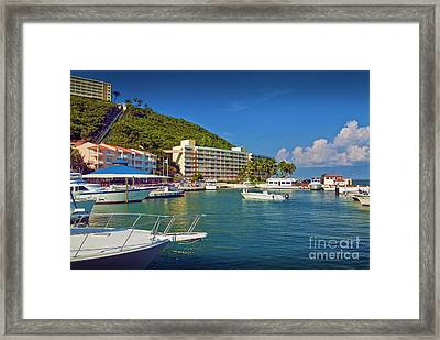 El Conquistador Resort Marina Framed Print by David Zanzinger