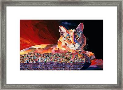 El Gato Sonata Framed Print