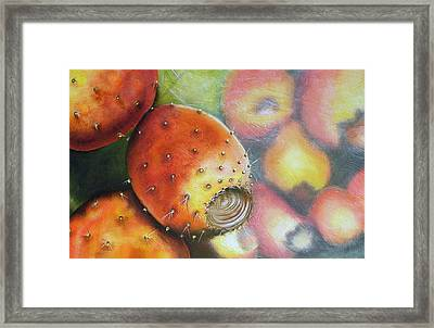 El Mercado Framed Print by Maribel Garzon