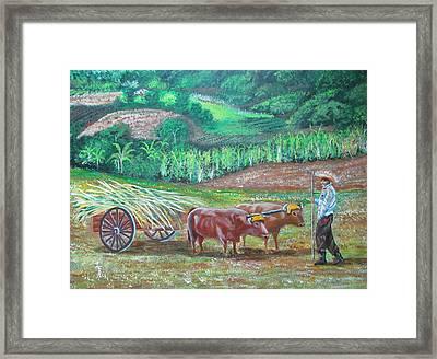 El Paraiso Del Campesino Framed Print by Luis F Rodriguez
