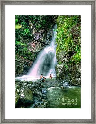 El Yunque Rain Forest Waterfall Framed Print by David Zanzinger