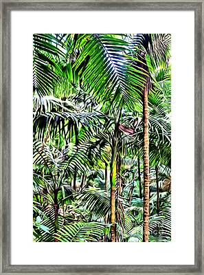 El Yunque Rainforest 2 Framed Print by Carey Chen