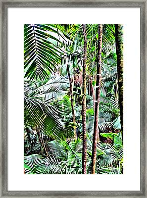 El Yunque Rainforest 3 Framed Print by Carey Chen