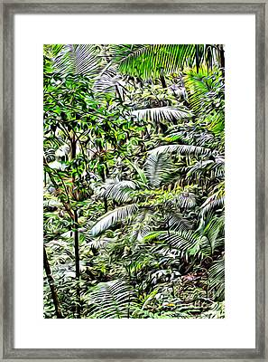 El Yunque Rainforest 4 Framed Print by Carey Chen