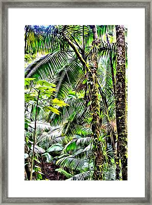 El Yunque Rainforest 7  Framed Print by Carey Chen