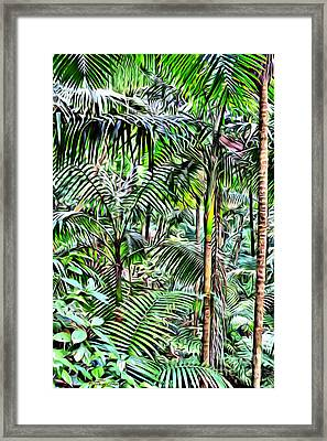 El Yunque Rainforest Framed Print by Carey Chen