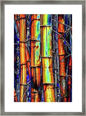 Electric Bamboo 3 Framed Print