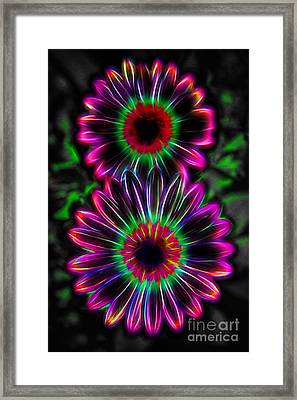 Electric Duo Framed Print by Kasia Bitner