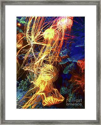 Electric Jellies Framed Print by Robert Ball
