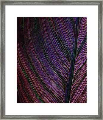 Electric Life Framed Print