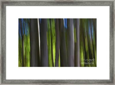 Electric Light  Framed Print