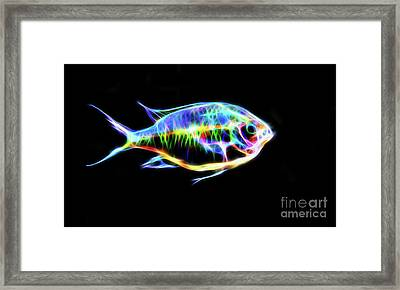 Electric Light Tropical Fish Framed Print
