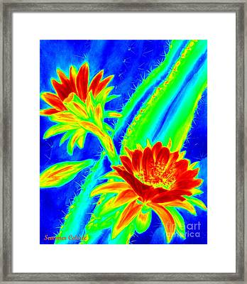 Electric Night Bloomer  Framed Print