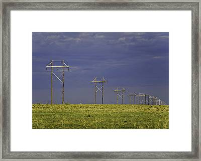 Electric Pasture Framed Print