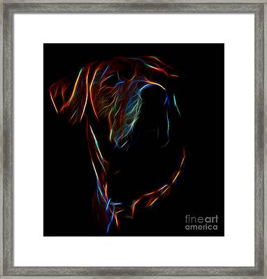 Electric Ridgeback Framed Print by Mim White