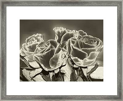 Electric Rose Framed Print by Wendy J St Christopher
