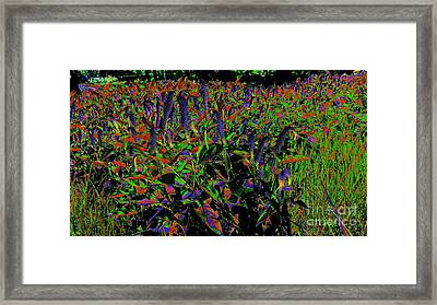 Electric Vision Framed Print