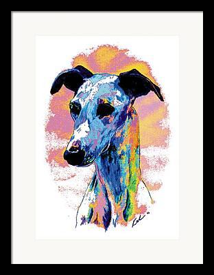 Sight Hound Framed Prints