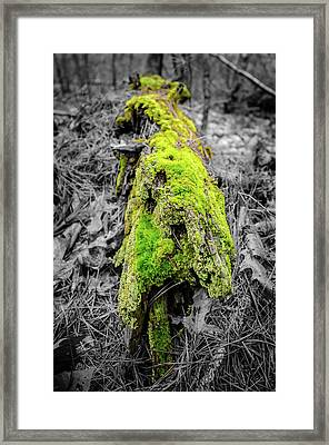 Electro Log Framed Print by Andrew Crispi