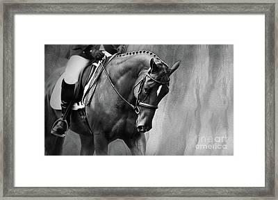 Elegance - Dressage Horse Large Framed Print by Michelle Wrighton
