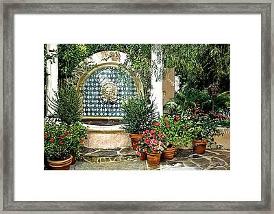 Elegant Afternoon Framed Print by David Lloyd Glover