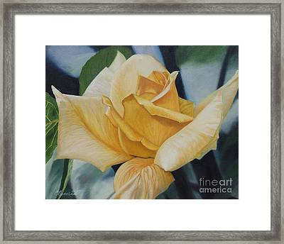 Elegant Beauty Framed Print